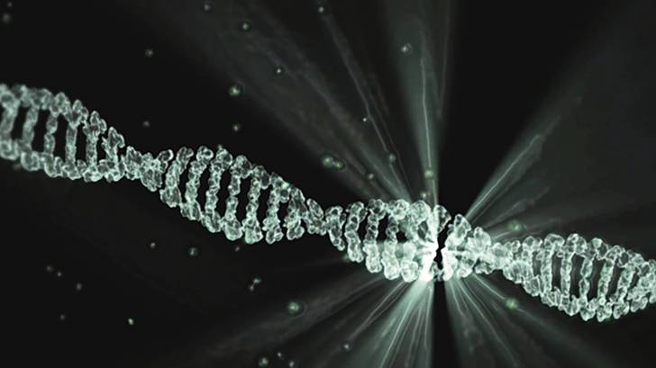depiction of a strand of dna
