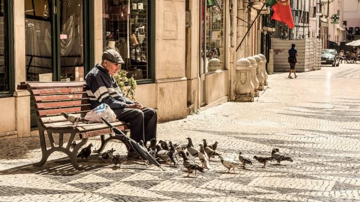 old man sitting on bench feeding birds
