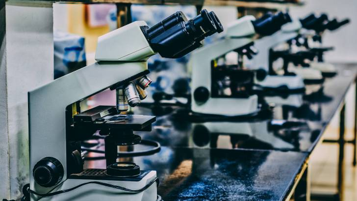 microscopes in a line in a lab