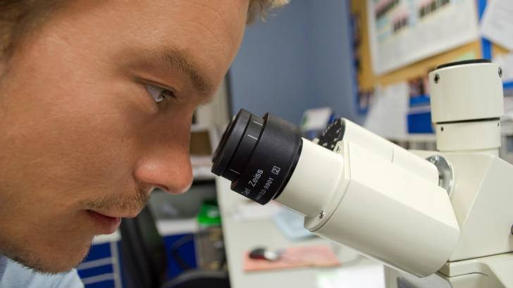 scientist looking thru a microscope