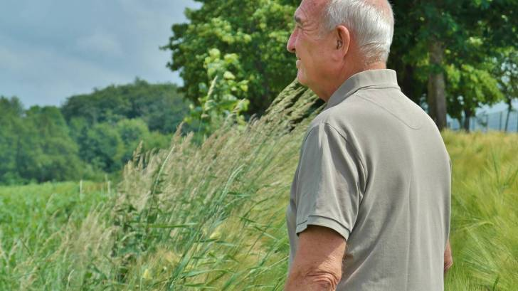 older man in a field looking out
