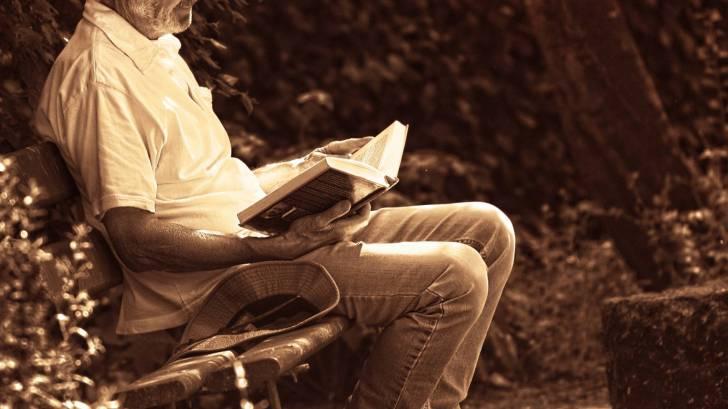 older man reading  a book in a garden