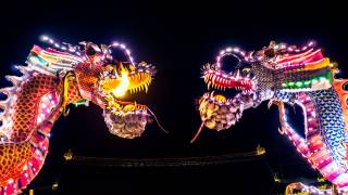chinese lighted dragons