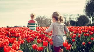 girls walking thru tulips