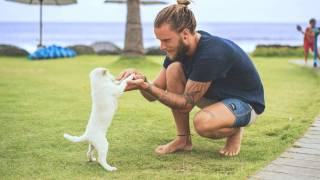 man playing with new puppy outside on grass