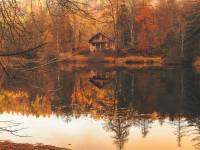 fall woods scene with a lake and cottage
