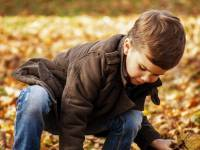 young boy playing in fallen leaves